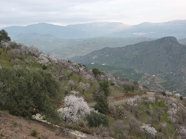 El ernite casa peque a de campo con vistas panoramicas for Lavaplatos granada